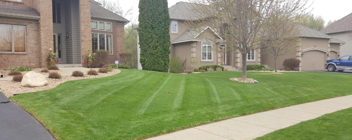 Lawn Service Edina, Best Lawn Service Edina Mn